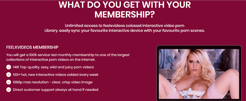 feelxvideos membership