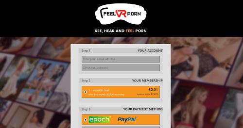 feelvrporn fees